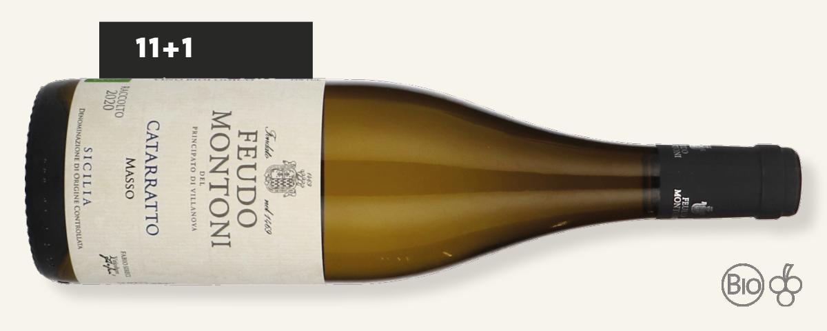 Kölner Weinkeller - CATARRATTO MASSO